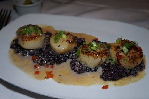 cloclo scallops